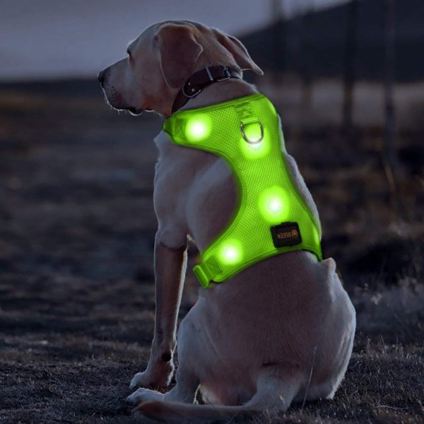 BSEEN LED Dog Harness LED Dog Vest USB Rechargeable Soft Mesh Vest with Adjustable Belt Padded Lightweight for Large Medium Small Dogs 1