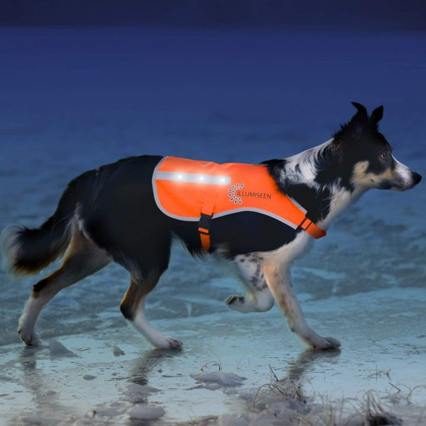 Illumiseen LED Dog Vest   Orange Safety Jacket with Reflective Strips & USB Rechargeable LED Lights   Increase Your Dog's Visibility When Walking, Running, Training Outdoors   with Straps & Buckles 1