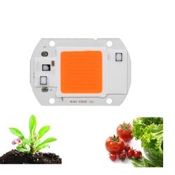 20W LED Full Spectrum Plant Grow Light DIY COB Chip AC220V 1