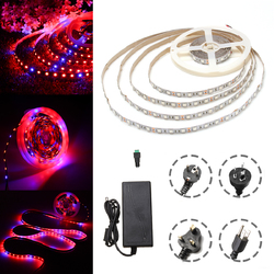 DC12V 5M Non-waterproof SMD5050 R:B 3:1 Grow LED Strip Light + 5A Power Adapter + Female Connector 1